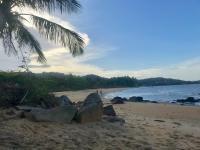 Mon projet d'Entreprise et de mode de vie partagé pendant mon séjour en Guyane